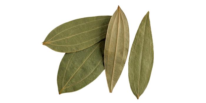 Cinnamon organic oil